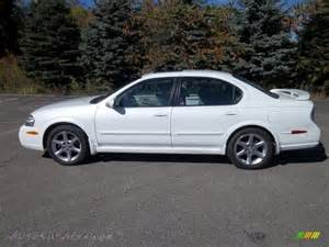 2003 Nissan Maxima 2003 Nissan Maxima Se In Glacier White Pearl 420600