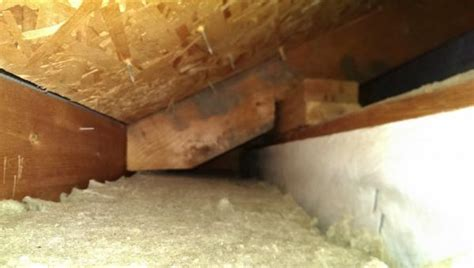 Can You Burn 2x4 In Fireplace by Fireplace Bumpout Doghouse Leaks Air Doityourself