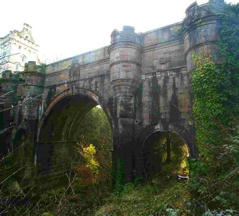 bridge puppies overtoun bridge mystery