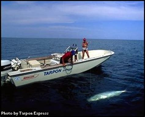 are trophy boats unsinkable galveston fishing guides captain mike williams and the