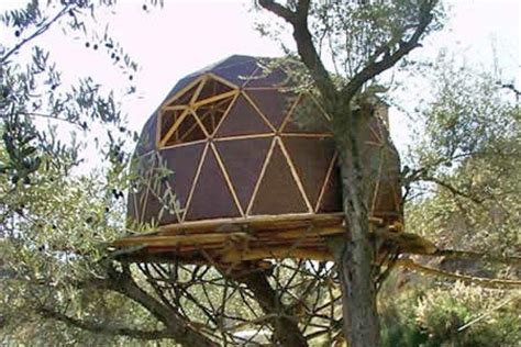 crazy tree houses crazy tree houses home design