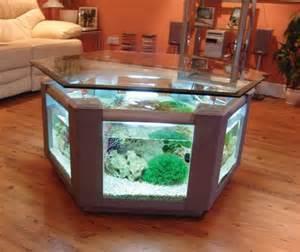 types of aquarium aquariums different types of aquariums