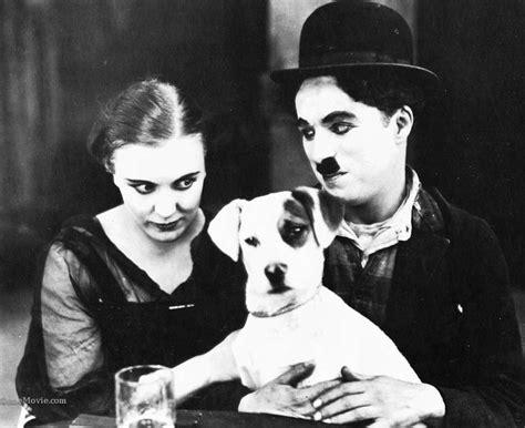 charlie chaplin biografie film stream 1000 images about animals of silent film on pinterest