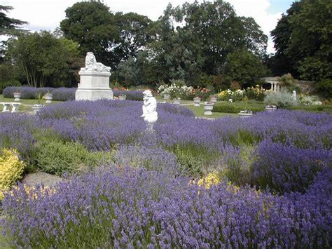 Walled Garden Sunbury Walled Garden