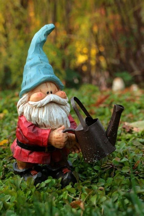 cute garden gnomes only best 25 ideas about gnomes on pinterest gnome