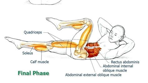 crisscross exercise abdominal exercises for stabilization part 7 the health science