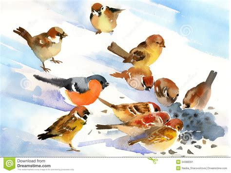 birds eat stock illustration image of nature painting