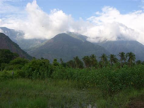 eastern and western ghats some useful facts on the western and eastern ghats of india