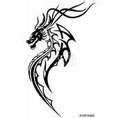 Drache Tribal Tattoo Stockfotos Und Lizenzfreie