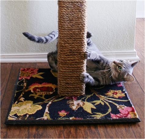 top  diy cat scratching posts  pads top inspired