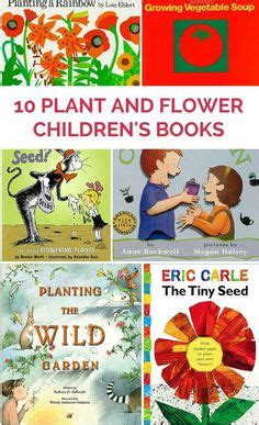 the digger and the flower books 10 children s books about butterflies from www
