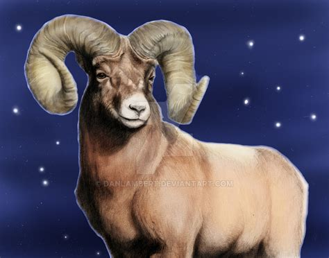 who is the for the rams aries the ram by danlambert on deviantart
