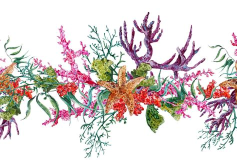 alimentazione per ipotiroidei cibo e tiroide il legame nascosto cucina naturale