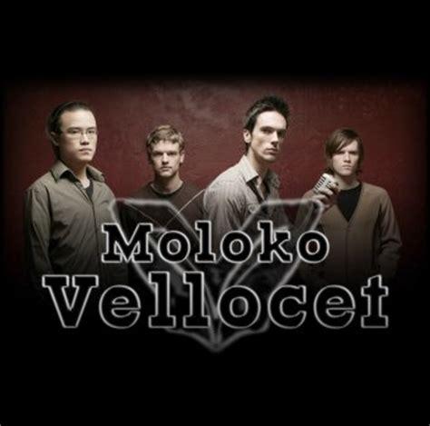 moloko vellocet  zealand musicians bands