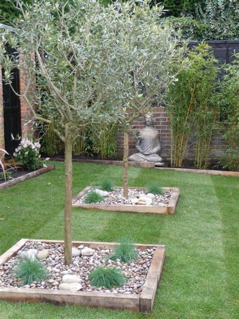 gräser garten anlegen kiesbeet anlegen mediterran garten olivenb 228 ume buddha gras