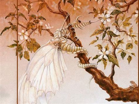 algunas imagenes mitologicas explicaciones mitol 243 gicas del invierno imagenes