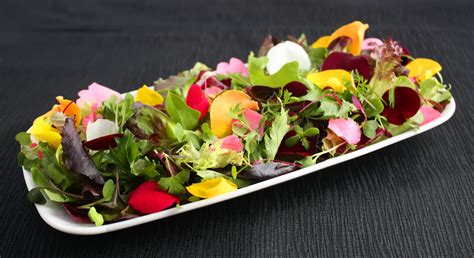 how to make flower food salad fresh origins