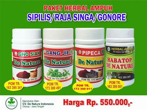 Paket Obat Herbal Sipilis raja de nature