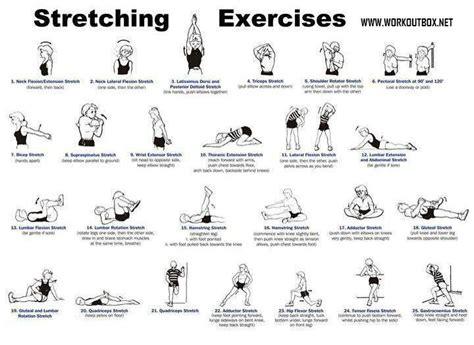 Weight Bench Workout Routine Beginners Http Media Cache Ec0 Pinimg Com Originals D6 Bb 81
