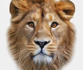 lion head vector for free download