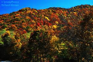 fabulous fall leaf color smoky mountains