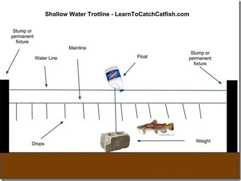 Light Up Troline by Catching Catfish With A Trotline How To Set A Trotline