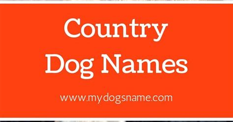 country puppy names awesome country names 87 soulful names you ll and charcoal lab