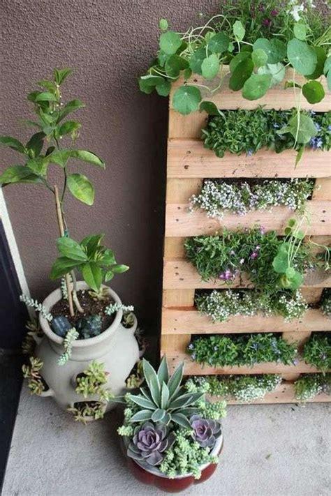 le mur vegetal idees  astuces de creation diy