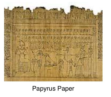 How To Make Paper Out Of Papyrus - reed used for paper 28 images papyrus plants that gave