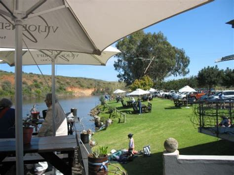boat cruise jeffreys bay river cruises breede river robertson wine valley western