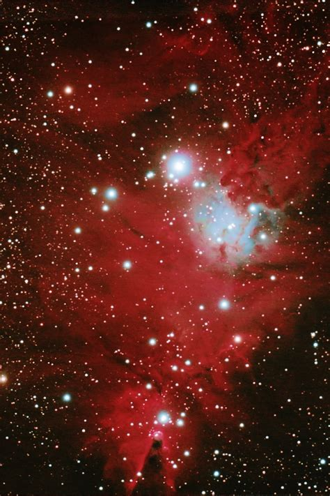 christmas tree nebula ngc 2264 fox fur nebula incorporating the cone and tree nebula crop member s