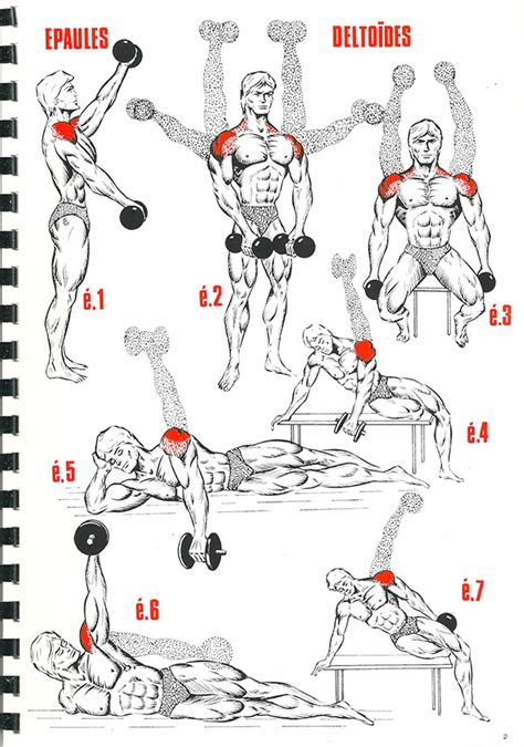 exercice pectoraux maison musculation exercice muscu maison