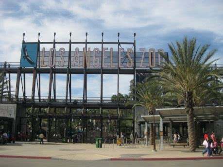 los angeles zoo insiders guide  visit   las  valued attractions