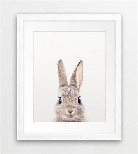 Bunny Nursery Decor Rabbit Print Woodland Nursery Decor Rabbit Photo Bunny