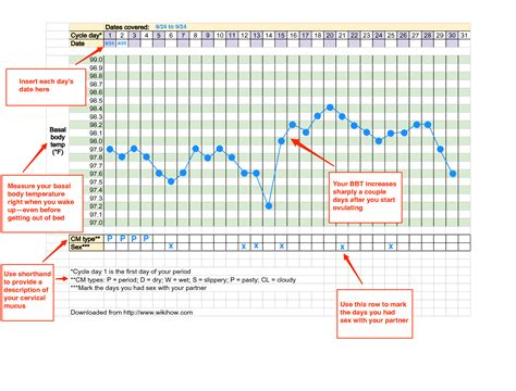 Thermometer Basal sle bbt chart pregnancy chart variations