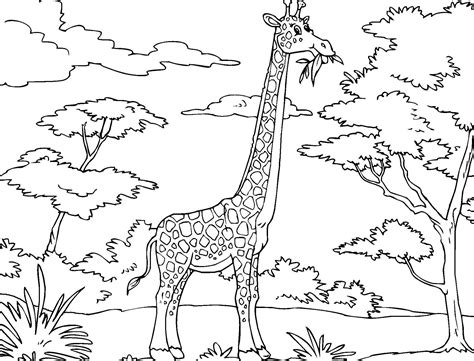 coloring page kids 8304 giraffe coloring pages bestofcoloring com