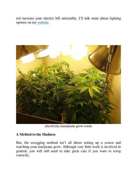 grow room lighting requirements how much electricity will i use with my indoor marijuana