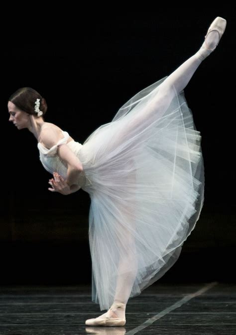 Trojika Hpo 8 Preety Dancer 24 best royal winnipeg ballet images on dancers ballet and ballet