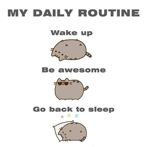 Daily Meme Pictures - my daily routine