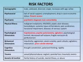 risk assessment and interventions no videos