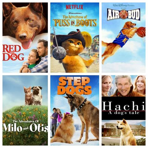 themes in the film red dog everybody loves animal inspired movies on netflix pearmama