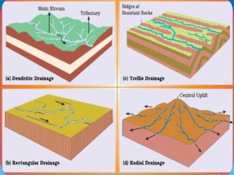 drainage pattern and types drainage