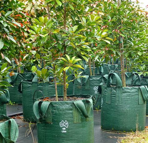 Garden Accessories Au 100 Litre Woven Planter Bags Nursery And Garden Supplies