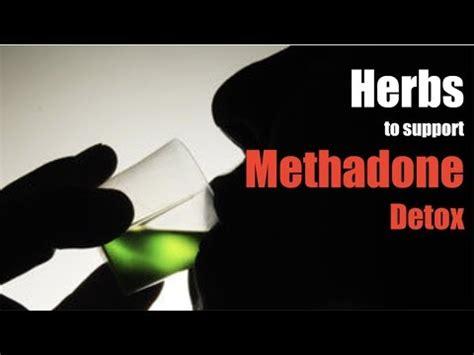 Methadone Detox Day 40 by Herbal Remedies For A Methadone Detox David Groce