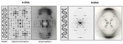 how to interpret x ray diffraction pattern how does one physically interpret the different