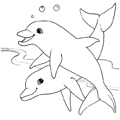 Dolphin Coloring Pages Dolphins Coloring Page