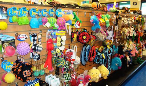 pet toys gallery