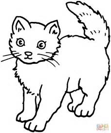 coloring pages of cats cat 25 coloring page free printable coloring pages