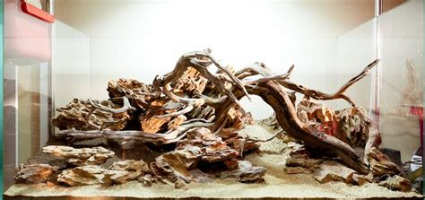 driftwood aquascape design hardscape by stu s 90x45x45 dragon stone scape aquarium