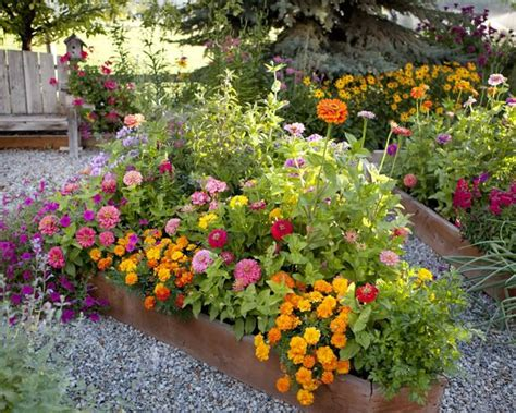 Flowers For Garden Beds Best 25 Raised Flower Beds Ideas On Raised Gardens Raised Garden Beds And Garden Beds